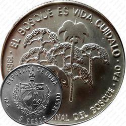 5 песо 1985, Международный год лесов [Куба]