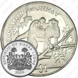1 доллар 2009, Обезьяны - Капуцин [Сьерра-Леоне]