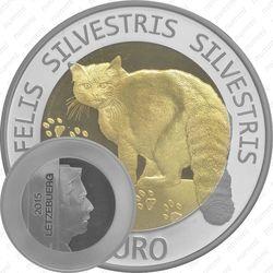 5 евро 2015, среднеевропейский лесной кот
