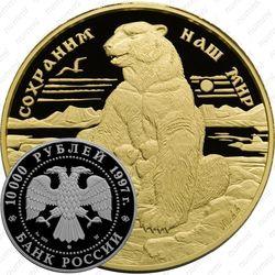 10000 рублей 1997, медведь