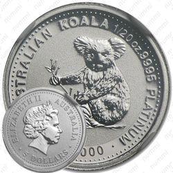 5 долларов 2000, коала
