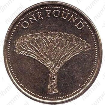 1 фунт 2015