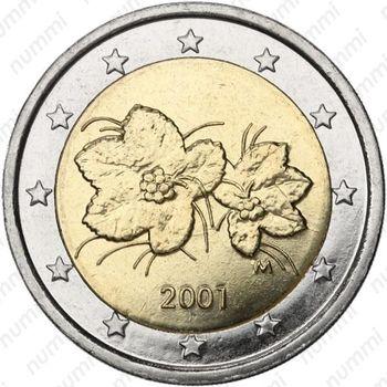 2 евро 2001, M, регулярный чекан Финляндии - Аверс