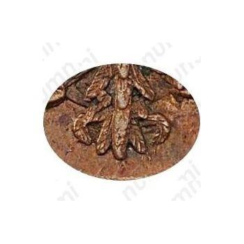 денга 1748, в крыле 12 перьев, хвост узкий