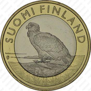 5 евро 2014, орлан-белохвост - Аверс