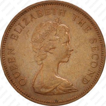 2 новых пенса 1971